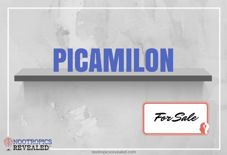 Buy Picamilon