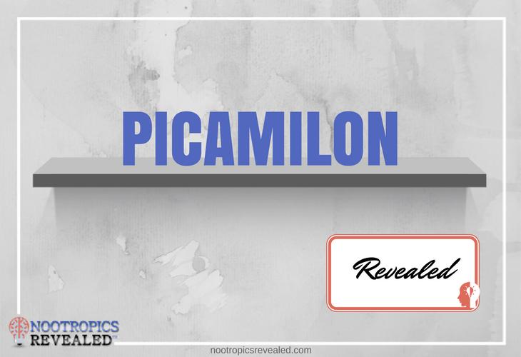 Picamilon