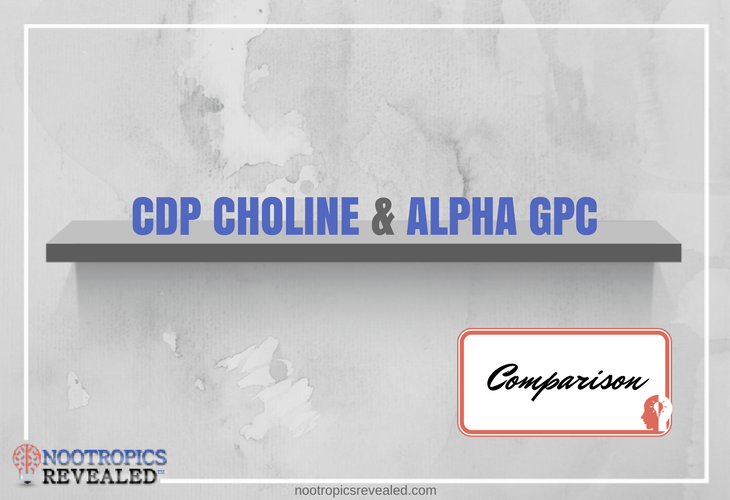 CDP Choline vs Alpha GPC